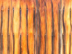 Fence ebony Stock Photos