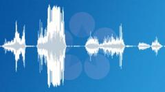 Beast 2 Sound Effect