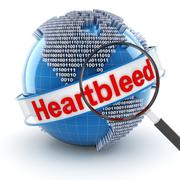 Heartbleed bug with digital globe and magnifying glass - stock illustration