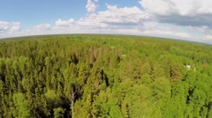 Forest around village near pond at summer sunny day. Aerial view Stock Footage