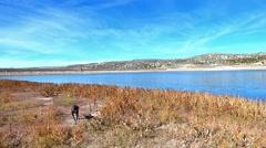 Sleek Black Dog Exploring a High Desert Lake Stock Footage
