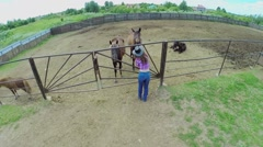 Woman in cowboy hat stands near gate and pats horse in paddock Stock Footage