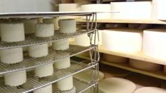 Feta cheese storage Stock Footage