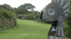 Sculptures in Kirstenbosch by Capetown (SA) Stock Footage