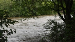 Stream River Stock Footage