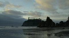 View of Ruby beach at dusk Stock Footage