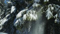 Winter's Tale Snow falls with fir branches Stock Footage