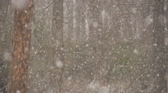 Heavy snow fall Stock Footage