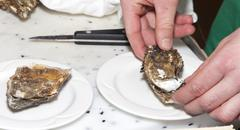 Chef is opening fresh oyster, close-up - stock photo