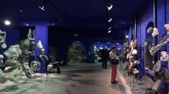 4k Visitors watching gemstones exhibition Jardim Tropical Madeira Stock Footage