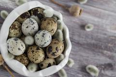 Small quail eggs wooden table dish  scattered database Stock Photos