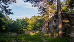 Ruins in the Forest with Beautiful Light Stock Footage