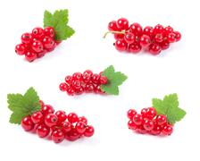 Red currant superfood collection set. Isolated white background - stock photo