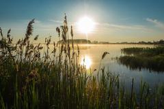Sunrise on the lake. - stock photo
