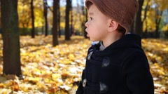 Little cute boy stands among dried foliage in autumn park Stock Footage