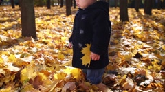 Little boy stands among dried foliage in autumn park at sunny day Stock Footage