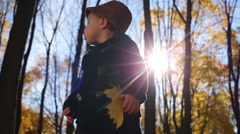 Little boy stands among dried yellow foliage in autumn park Stock Footage