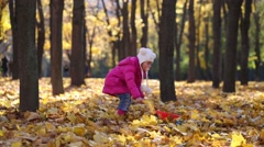 Little girl in pink carries dry leaves in cart in park at autumn Stock Footage