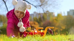 Cute little girl in pink puts leaves to cart in park at autumn - stock footage