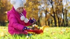 Little girl in pink puts leaves to cart in park at autumn day - stock footage