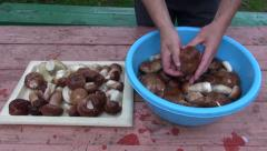 Preparing fresh mushrooms cep boletus on table in farm Stock Footage