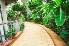 Greenhouse With Flowers. Temperate House Conservatory, Botanical Stock Photos