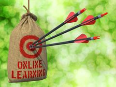 Online Learning - Arrows Hit in Red Target Stock Illustration