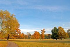 Parkland, park, trees, autumn - stock photo
