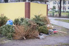 discarded Christmas trees, garbage after Christmas - stock photo