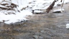 Ice water running in a fast spring stream. Tree branches hanging over the creek - stock footage
