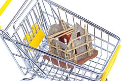 Shell house in shopping cart Kuvituskuvat