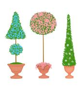 Stock Illustration of Three Floral Topiaries
