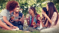 In high quality format happy friends in the park having picnic - stock footage