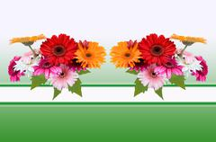 Greeting card with flowers Gerber - stock illustration