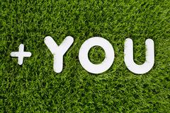 YOU text made of white wood design element on grass background. - stock photo