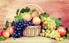Fruits and grapes. Vintage retro hipster style version Stock Photos