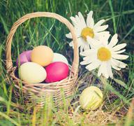 Easter concept - eggs, basket and daisies. Vintage retro hipster style versio Kuvituskuvat