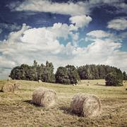 Big hay rolls on a beautiful field. Vintage retro hipster style version Stock Photos