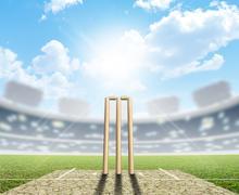Cricket Stadium And Wickets Stock Illustration