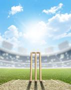 Cricket Stadium And Wickets - stock illustration