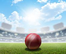 Cricket Stadium And Ball - stock illustration