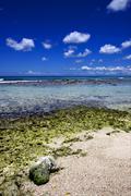 Beach rock and stone in  republica dominicana Stock Photos