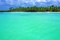 Coastline  in  republica dominicana Stock Photos