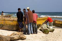 Work in  republica dominicana Stock Photos