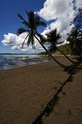 people boat palm lagoon and coastline - stock photo