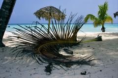 republica dominicana  beach - stock photo