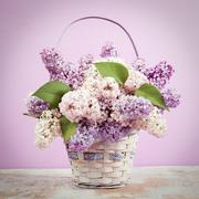 Lilac in vase. Vintage retro hipster style version Stock Photos
