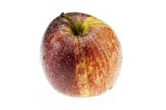 Gala apple on white background cutout Stock Photos