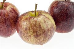 Stock Photo of gala apple on white background cutout