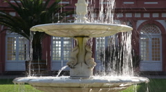 Fountains in the park Biebrich 3 Stock Footage